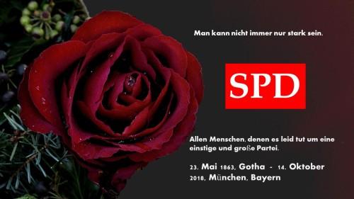 SPD_2018_101